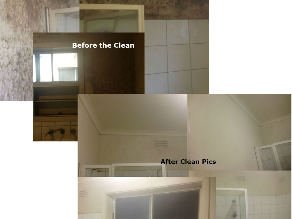 END OF LEASE CLEANING APARTMENT CLEANING IN MELBOURNE